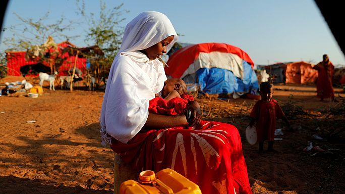 L'Africa e la Penisola Arabica muoiono di fame e sete, l'appello dell'Unhcr