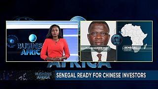 Le Sénégal veut attirer les investisseurs de l'Asie du Sud-Est [BUSINESS AFRICA]