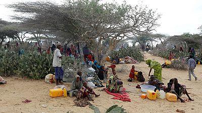 Le choléra gagne du terrain en Somalie, 25 000 personnes déjà touchées