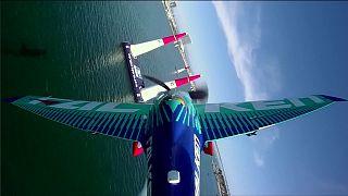 Ad ali spiegate fra i piloni: acrobazie in volo da brividi