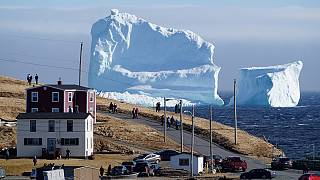 Arctic icebergs reach Canadian coast, disrupting sea lanes and fishing