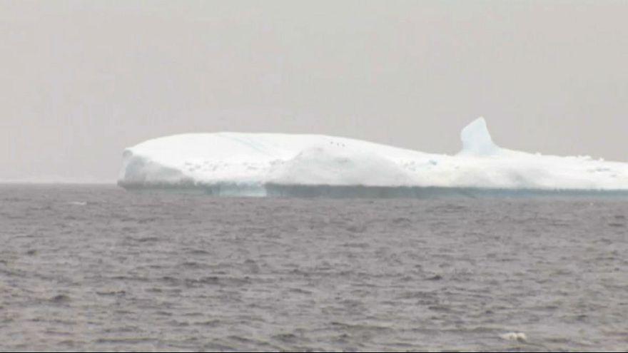 جبال جليدية قريبة من الساحل تثير شغف السياح في كندا
