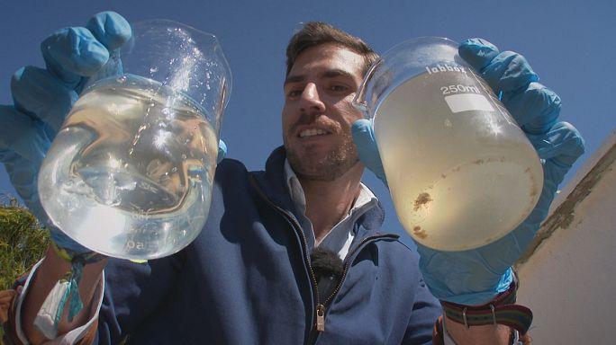 Elettricità biologica per purificare l'acqua
