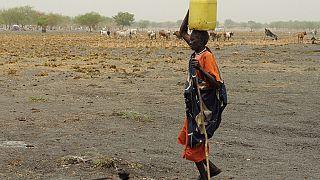 Soudan du Sud : Un génocide en cours contre l'ethnie Dinka (Opposition)