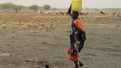 Soudan du Sud : l'opposition accuse l'ethnie Dinka de préparer un génocide