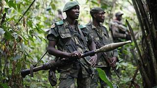 UN 'horrified' by video showing killing of experts in DR Congo