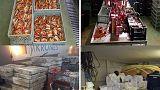 Europol'den 61 ülkede yasadışı gıda operasyonu