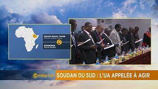 L'Union Africaine appelée à intervenir au Soudan du Sud [The Morning Call]