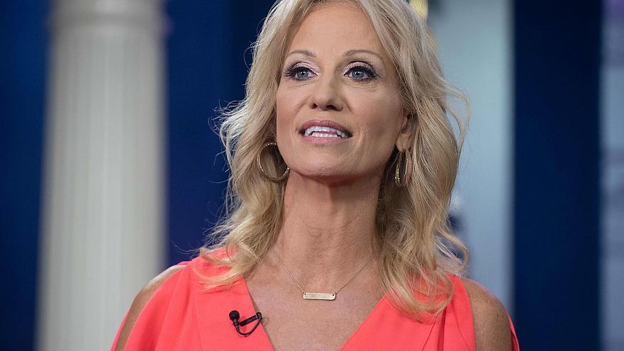 Image: Kellyanne Conway speaks to Fox News from the briefing room at the Wh