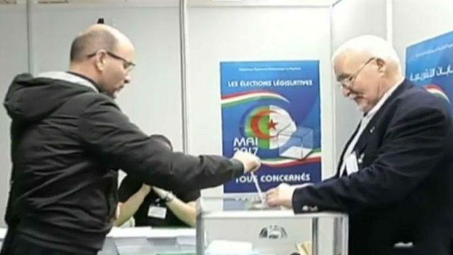جزائريو المهجر يصوتون مبكرا للانتخابات التشريعية