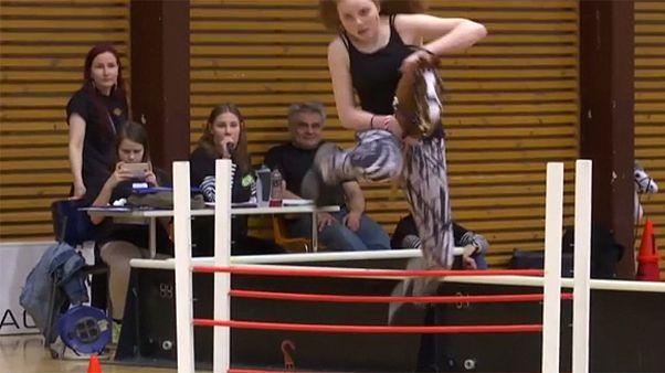 Finlandiyalı gençler oyuncak atlarla yarıştı