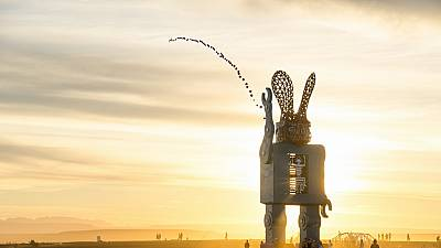 AfrikaBurn brings artwork to South African desert