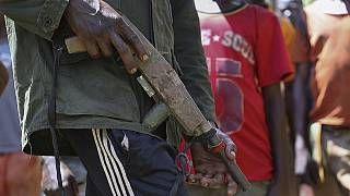 Dozens killed in Central African Republic violence in past 3 months: report