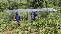 Congo : l'énergie solaire, le challenge d'''Africa Solaire''