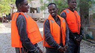 Chinese navy hands over three Somali pirates to authorities