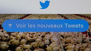 انتخابات ریاست جمهوری فرانسه در شبکههای مجازی
