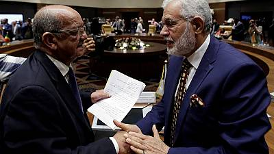 Libya's neighbours discuss restoration of peace and democracy