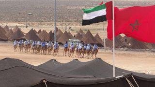 تدشين مضمار لسباقات الهجن في مدينة طانطان المغربية