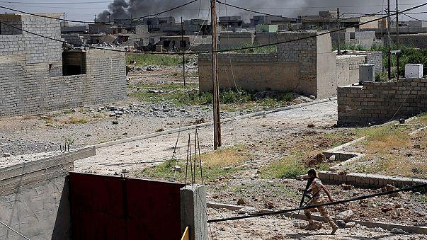"""Las fuerzas iraquíes arrinconan al Dáesh en el noroeste de Mosul en """"la fase final"""" de la ofensiva"""