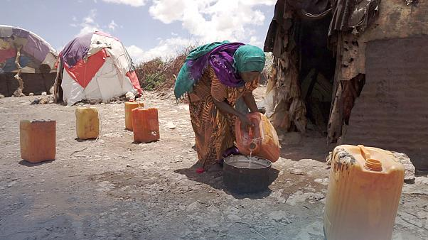 In Somaliland droht Hungersnot