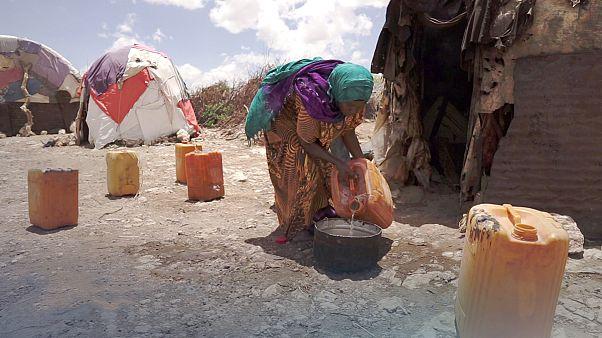 Somaliland kuraklıkla mücadele ediyor