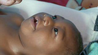 Zika-Virus: Brasilien hebt Notstand auf
