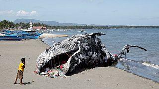 ساخت مجسمه نهنگ مرده در فیلیپین برای آگاهی بخشی درباره زبالههای پلاستیکی