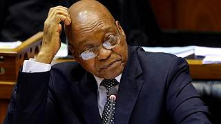 South Africa: Opposition bid to oust Zuma heads to Constitutional court