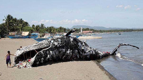 مجسم على شكل حوت ميت للتوعية من النفايات النفايات البلاستيكية