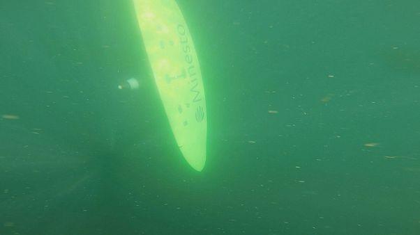 Takeaway: deep green