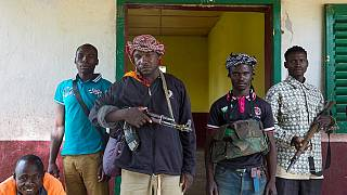 At least 30 killed in renewed militia attacks in Central African Republic