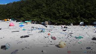 Güney Pasifik'te ıssız bir adada 17 tondan fazla plastik atık bulundu