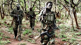 115 bodies found in Central African Republic town
