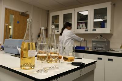 Tests are conducted in a laboratory at Plumpton College\'s wine program in Lewes, England.