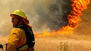 حرائق في كاليفورنيا تلتهم أكثر من ألف فدان