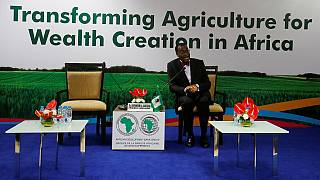Indo-Africa relations take center stage at AfDB's AGM in Gujarat