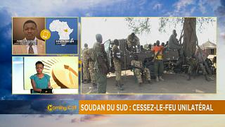 South Sudan's unilateral ceasefire [The Morning Call]