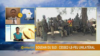 Cessez-le-feu unilatéral au Soudan du sud [The Morning Call]