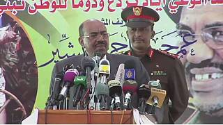 Sudan's President Omar al-Bashir accuses Egypt of arming rebels