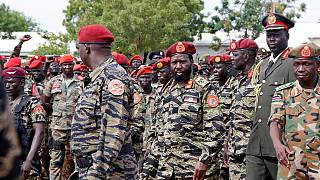 UN security council wary of South Sudan ceasefire