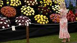 Dancing pandas and walking trees welcome royals to Chelsea Flower Show 2017