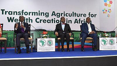 """""""Le continent africain doit apprendre du succès de l'Asie"""" - président de la BAD"""