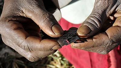 FGM not a violation of anyone's rights culturally - Liberian judicial nominee