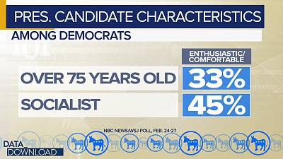 Only 33 percent of Democrats say they would be enthusiastic about, or comfortable with, a candidate 75 or older and only 45 percent said they felt that way about a socialist candidate.