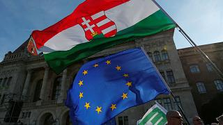 "Hungarians hold a peaceful ""picnic""protest against NGO reform"