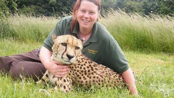 Großbritannien: Tiger tötet Zoowärterin