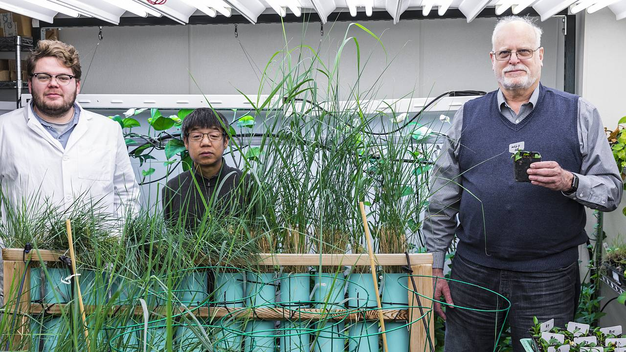 Image: The team behind the modified houseplants: Ryan Routsong, Long Zhang