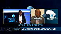 La RDC en quête de relance de la production caféière dans la province du Sud-Kivu