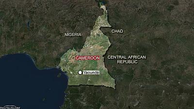 Children strapped with explosives kill 9 in north Cameroon