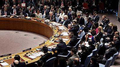 La Guinée équatoriale siège pour la première fois au Conseil de sécurité de l'ONU